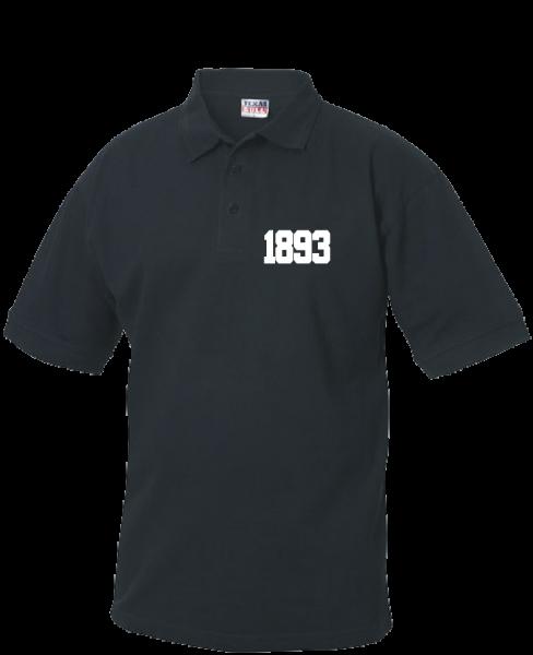 Polo 1893